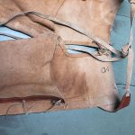 Vintage Cowhide Chaps 13